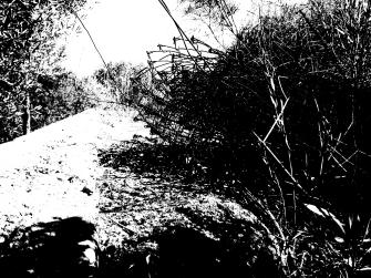 bunk abstrakt 4