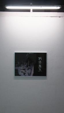 Landscape 3000 show1