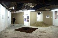 Landscape 3000 show2